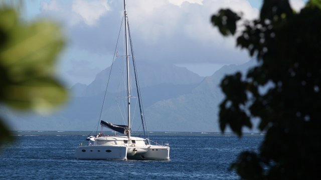 Tahiti Stock Footage: Voyages et vacances